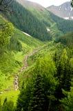 Runoff longo da água das montanhas snow-capped Imagens de Stock Royalty Free