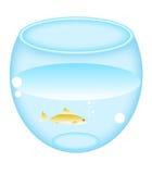runt akvarium stock illustrationer