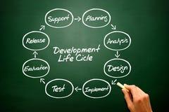 Runt flödesdiagram av utvecklingsprocessen för livcirkulering på Arkivbild