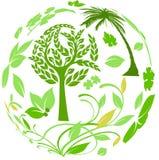 runt om den botaniska världen Royaltyfria Bilder