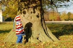 Runt om treen Arkivbilder