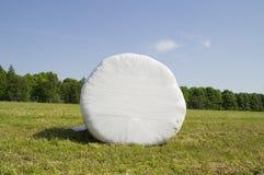 Runt plast- mejat hö för förpacka Fotografering för Bildbyråer