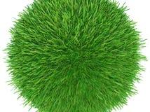 Runt stycke av kantjusterat gräs som ska installeras Royaltyfria Foton