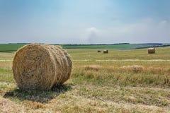 runt sugrör för balfält Fotografering för Bildbyråer