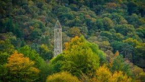 Runt torn i höst Royaltyfri Foto