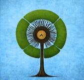 Runt träd Arkivfoton