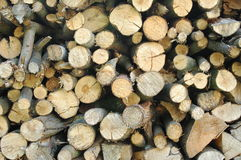 Runt vedträ staplad wood bakgrund Royaltyfria Foton