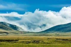 Ruoergai obszar trawiasty, Gansu, Chiny zdjęcia royalty free