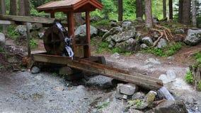 Ruota della cascata vicino a Stuiben archivi video
