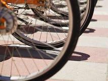 Ruota di bicicletta Fotografia Stock