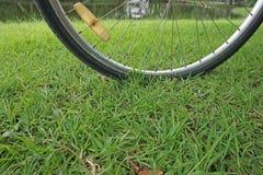 Ruota di bicicletta immagini stock libere da diritti