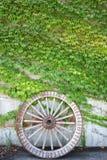 Ruota di legno antica del carretto con le foglie verdi Fotografie Stock