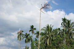 Ruota di vento fatta a mano, Immagini Stock Libere da Diritti