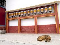 Ruote di preghiera per le buone karmi nel Sikkim, India fotografia stock libera da diritti