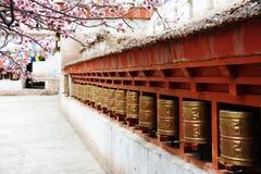 Ruote di preghiera religiose e bello fiore dell'albicocca immagini stock libere da diritti