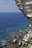 Rupe del calcare in Bonifacio, Corsica, Francia Immagini Stock Libere da Diritti