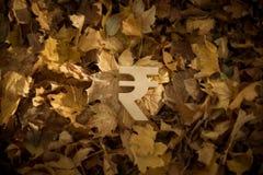 Rupievalutasymbol på Autumn Leaves i sol för sen afton royaltyfria foton