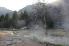 Rupite - dichtbij de temperatuur van de mineraalwaterdamp 75 graden stock afbeeldingen