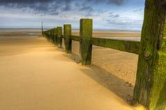 Rupteurs d'onde à la plage ensoleillée image libre de droits