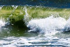 Rupteurs de mer   photo stock
