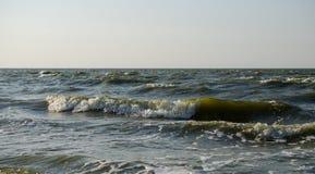 Ruptura das ondas na costa foto de stock royalty free