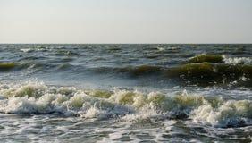 Ruptura das ondas na costa foto de stock