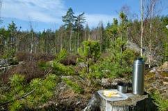 Ruptura de café na floresta Imagem de Stock Royalty Free