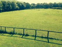 Ruptura meados de da semana do campo verde Fotos de Stock Royalty Free