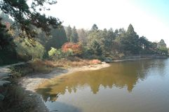 Ruqin lake-lushan botanical garden. The botanical garden of Mount Lu is mainly introduced and domesticated plants. It is a famous sub Alpine botanical garden and Stock Photo