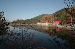 Ruqin lake-lushan botanical garden. The botanical garden of Mount Lu is mainly introduced and domesticated plants. It is a famous sub Alpine botanical garden and Stock Image