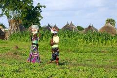 Rural Foto de archivo
