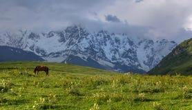 rural Image libre de droits