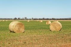 Rural Stock Images