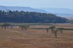 rural Foto de archivo libre de regalías