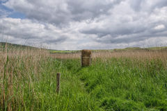 Rural Abbotsbury Royalty Free Stock Photography
