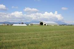 Rural Acreage in Spring Stock Photos