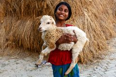 Rural Adolescent. An adolescent girl playing with a sheep in the remote village of West Bengal Stock Images