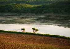 Rural agricultural landscape, field on  bank of river Royalty Free Stock Images
