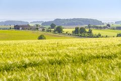 Agricultural scenery at spring time Stock Photos