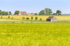 Agricultural scenery at spring time Stock Images