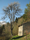 Rural alpine hut. View of an alpine landscape with tree and an alpine hut Stock Photo