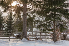 Rural alpine winter landscape with fence and path Royalty Free Stock Photography