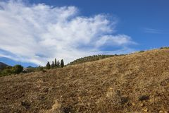 Rural Andalusian hillside landscape Royalty Free Stock Images