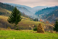 Rural area of Carpathian mountains. Beautiful rural area of Carpathian mountains. haystack and spruce tree on edge of a hill. village down in hazy valley stock photos