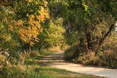 Country road in the autumn - Indian summer royalty free stock photography