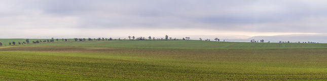 Rural area with fields Stock Photo
