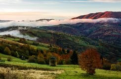 Rural area on foggy autumn morning. Gorgeous landscape with haystacks on green meadows and colorful trees Royalty Free Stock Photos