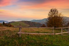 Rural area in mountains at dawn. Fence around the orchard on hill. beautiful autumn scenery royalty free stock images