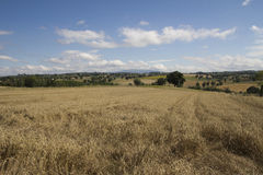 Rural area Stock Images