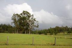 Rural Australia. N farmland just before storm breaks Stock Photo